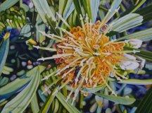 Outback-Creatives-Highlife-Magazine-www.highlifemagazine.net
