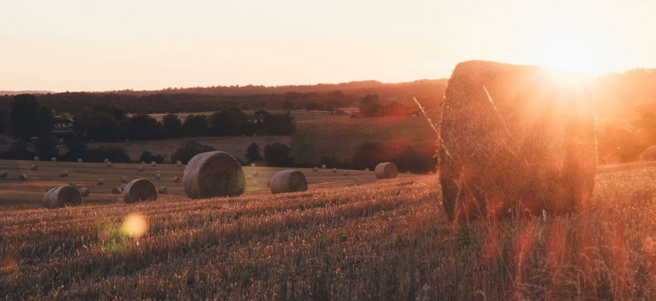 Free_Hay_bales_Highlife_magazine
