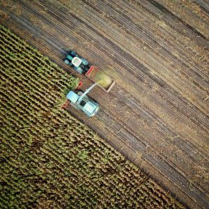 Agriculture-in-Australian-country