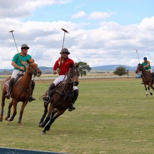 Downs Polo Club